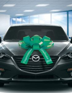 2019 graduation car bow in green and white