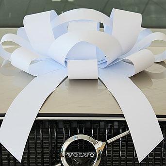 Big Car Bow, Large White Car Bow