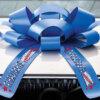 custom car bow