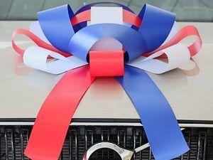 Giant Car Bow