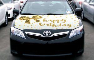 Car Bow Hoodie - White Gold
