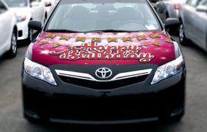 Car Bow Hoodie - Pink