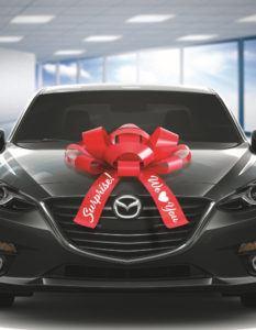 Surprise Car Bow