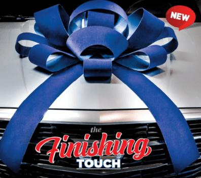 large blue velvet car bow
