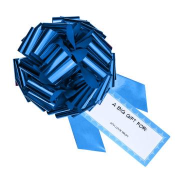 blue car bow gift bow